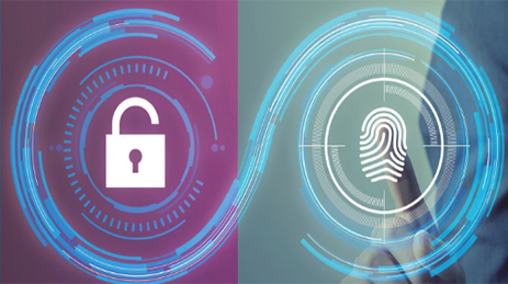 Why are more companies using a Fingerprint Management System?